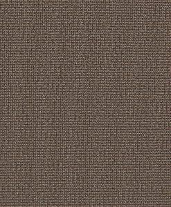 Сірий ковролінCapri (Бельгія)